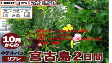 リブレ宮古島2日間2018/10/01~2019/05/24