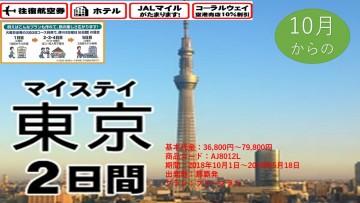 マイステイ 東京 2日間   2018/10/01~2019/05/18